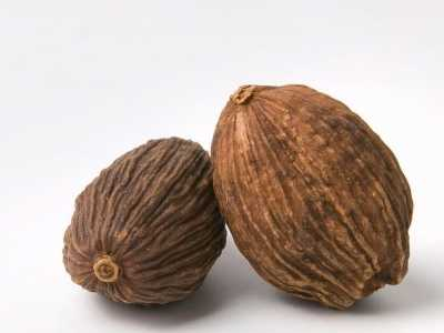 罂粟壳究竟有些什幺作用 罂粟壳有什幺作用