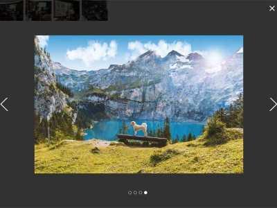 js图片画廊点击弹出遮罩背景大图切换代码 背景图片点击切换