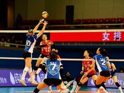 球迷直言不给她机会 上海女排主教练