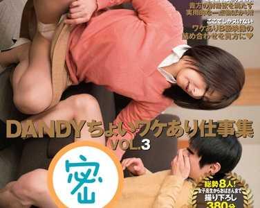 BT种子下载 番号dandy-486
